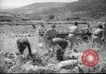 Image of Palestine civilians Palestine, 1945, second 3 stock footage video 65675065132