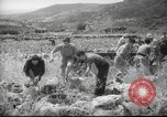 Image of Palestine civilians Palestine, 1945, second 4 stock footage video 65675065132