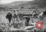 Image of Palestine civilians Palestine, 1945, second 5 stock footage video 65675065132