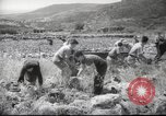 Image of Palestine civilians Palestine, 1945, second 7 stock footage video 65675065132