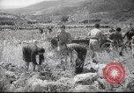 Image of Palestine civilians Palestine, 1945, second 9 stock footage video 65675065132