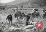 Image of Palestine civilians Palestine, 1945, second 10 stock footage video 65675065132