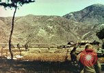 Image of Korean War Korea, 1951, second 6 stock footage video 65675065192