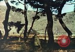 Image of Korean War Korea, 1951, second 12 stock footage video 65675065192