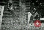 Image of chicken thieves West Orange New Jersey USA, 1896, second 1 stock footage video 65675065282