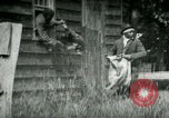 Image of chicken thieves West Orange New Jersey USA, 1896, second 2 stock footage video 65675065282