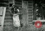 Image of chicken thieves West Orange New Jersey USA, 1896, second 4 stock footage video 65675065282