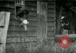 Image of chicken thieves West Orange New Jersey USA, 1896, second 12 stock footage video 65675065282