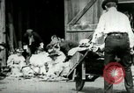 Image of husking bee West Orange New Jersey USA, 1898, second 9 stock footage video 65675065287