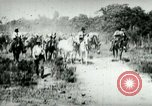 Image of army mules carry ammunition Cuba, 1898, second 3 stock footage video 65675065296