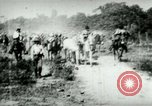 Image of army mules carry ammunition Cuba, 1898, second 4 stock footage video 65675065296
