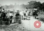 Image of army mules carry ammunition Cuba, 1898, second 5 stock footage video 65675065296