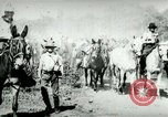 Image of army mules carry ammunition Cuba, 1898, second 9 stock footage video 65675065296
