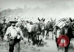 Image of army mules carry ammunition Cuba, 1898, second 12 stock footage video 65675065296
