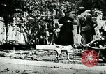 Image of Man chopping wood United States USA, 1898, second 12 stock footage video 65675065304