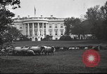 Image of Woodrow Wilson Washington DC USA, 1918, second 6 stock footage video 65675065338