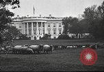 Image of Woodrow Wilson Washington DC USA, 1918, second 7 stock footage video 65675065338