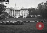 Image of Woodrow Wilson Washington DC USA, 1918, second 8 stock footage video 65675065338
