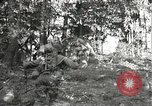 Image of Japanese-American soldiers moving into combat positions Bruyeres France, 1944, second 9 stock footage video 65675065592