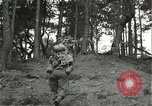 Image of Japanese-American soldiers moving into combat positions Bruyeres France, 1944, second 11 stock footage video 65675065592
