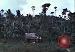 Image of native civilians Pacific Theater, 1944, second 12 stock footage video 65675065672