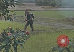 Image of United States Marines Quang Ngai Vietnam, 1967, second 4 stock footage video 65675065747
