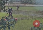 Image of United States Marines Quang Ngai Vietnam, 1967, second 5 stock footage video 65675065747