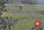 Image of United States Marines Quang Ngai Vietnam, 1967, second 6 stock footage video 65675065747
