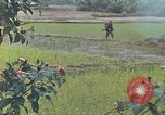 Image of United States Marines Quang Ngai Vietnam, 1967, second 9 stock footage video 65675065747
