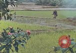 Image of United States Marines Quang Ngai Vietnam, 1967, second 10 stock footage video 65675065747