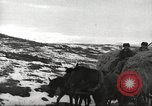 Image of convoy of trucks Crimea Ukraine, 1945, second 10 stock footage video 65675065823