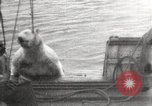 Image of Whaling ship Arctic Ocean, 1914, second 10 stock footage video 65675065850