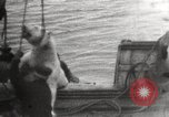 Image of Whaling ship Arctic Ocean, 1914, second 12 stock footage video 65675065850