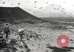 Image of birds on Ascension Island Ascension Island, 1922, second 2 stock footage video 65675065872