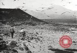 Image of birds on Ascension Island Ascension Island, 1922, second 4 stock footage video 65675065872