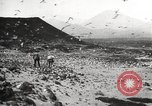 Image of birds on Ascension Island Ascension Island, 1922, second 11 stock footage video 65675065872