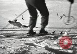 Image of German troops skiing Italy, 1943, second 9 stock footage video 65675065892