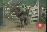 Image of rodeo Colorado United States USA, 1978, second 1 stock footage video 65675065946