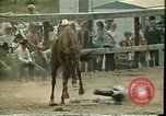 Image of rodeo Colorado United States USA, 1978, second 3 stock footage video 65675065946