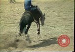 Image of rodeo Colorado United States USA, 1978, second 6 stock footage video 65675065946