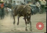 Image of rodeo Colorado United States USA, 1978, second 11 stock footage video 65675065946