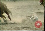 Image of rodeo Colorado United States USA, 1978, second 12 stock footage video 65675065946
