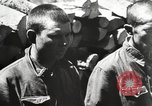 Image of German troops Soviet Union, 1942, second 8 stock footage video 65675065988