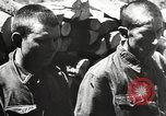 Image of German troops Soviet Union, 1942, second 9 stock footage video 65675065988