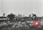 Image of German troops Soviet Union, 1942, second 9 stock footage video 65675065990