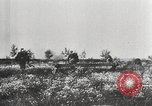 Image of German troops Soviet Union, 1942, second 10 stock footage video 65675065990