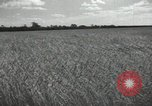 Image of Soviet men Soviet Union, 1941, second 7 stock footage video 65675066003