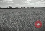 Image of Soviet men Soviet Union, 1941, second 8 stock footage video 65675066003