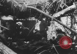 Image of Allied soldiers Buna New Guinea, 1943, second 12 stock footage video 65675066018