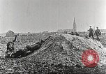 Image of German Red Cross dogs France, 1916, second 5 stock footage video 65675066059